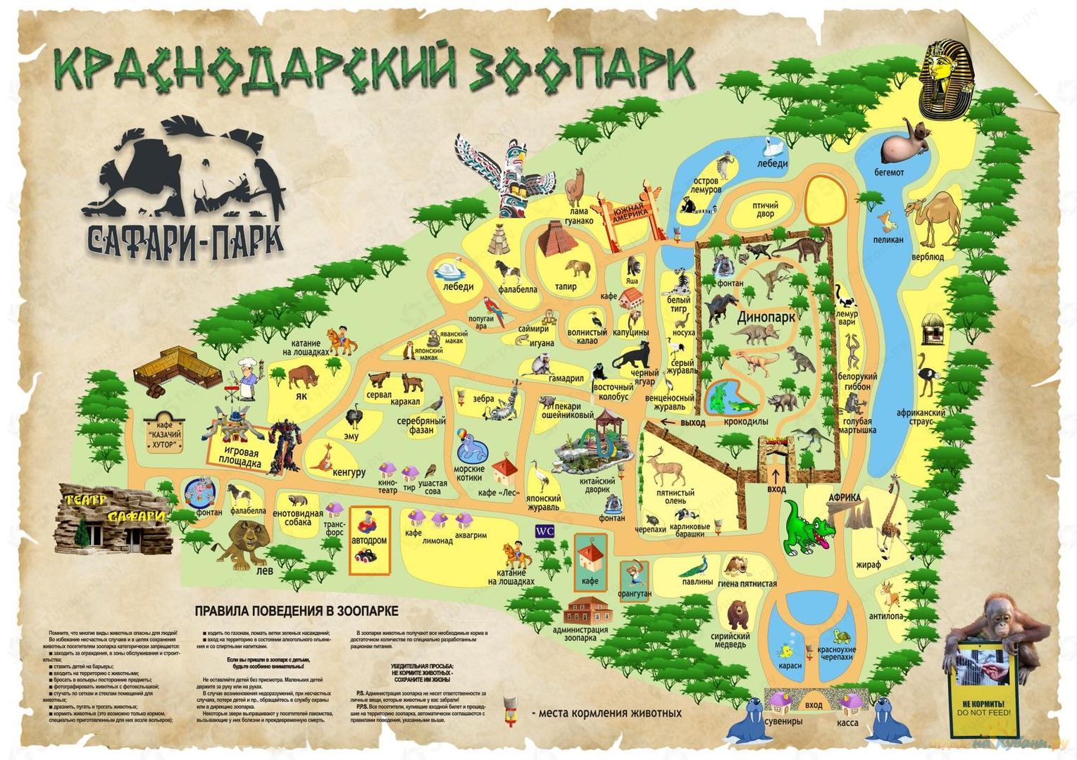 Сафари-парк в Краснодаре - YouTube