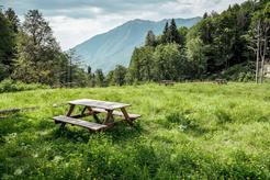 В горах Сочи обустроили площадку для автокемпинга